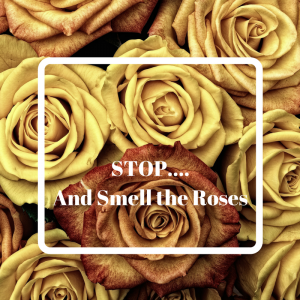 STOP…. And Smell the Roses