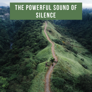 The Powerful Sound of Silence